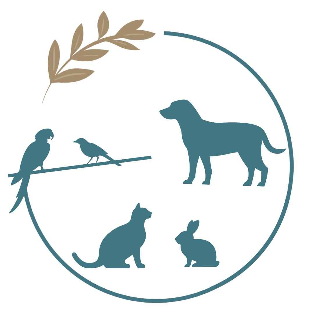 activité médiation animale zoothérapie agreage